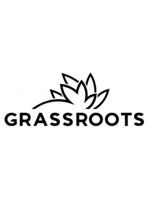 RR Birthday Cake by Grassroots 1G - $18