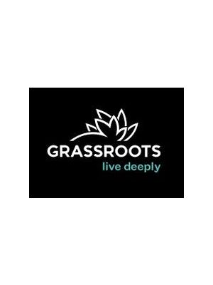 Remedy Grassroots 1:1 RSO capsules (10) - $45