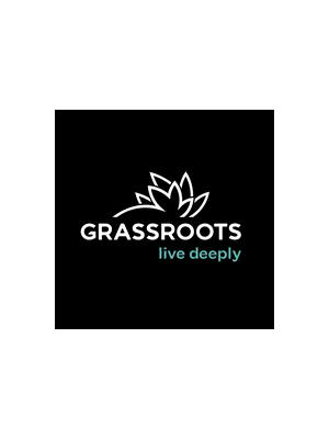 REMEDY Motor Breath 0.3g pen - Grassroots - $35