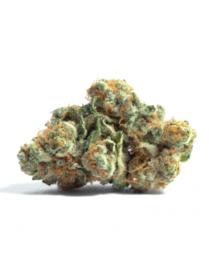 RR Grape Lime Ricky Flower by SunMed Growers - 3.5g - $45